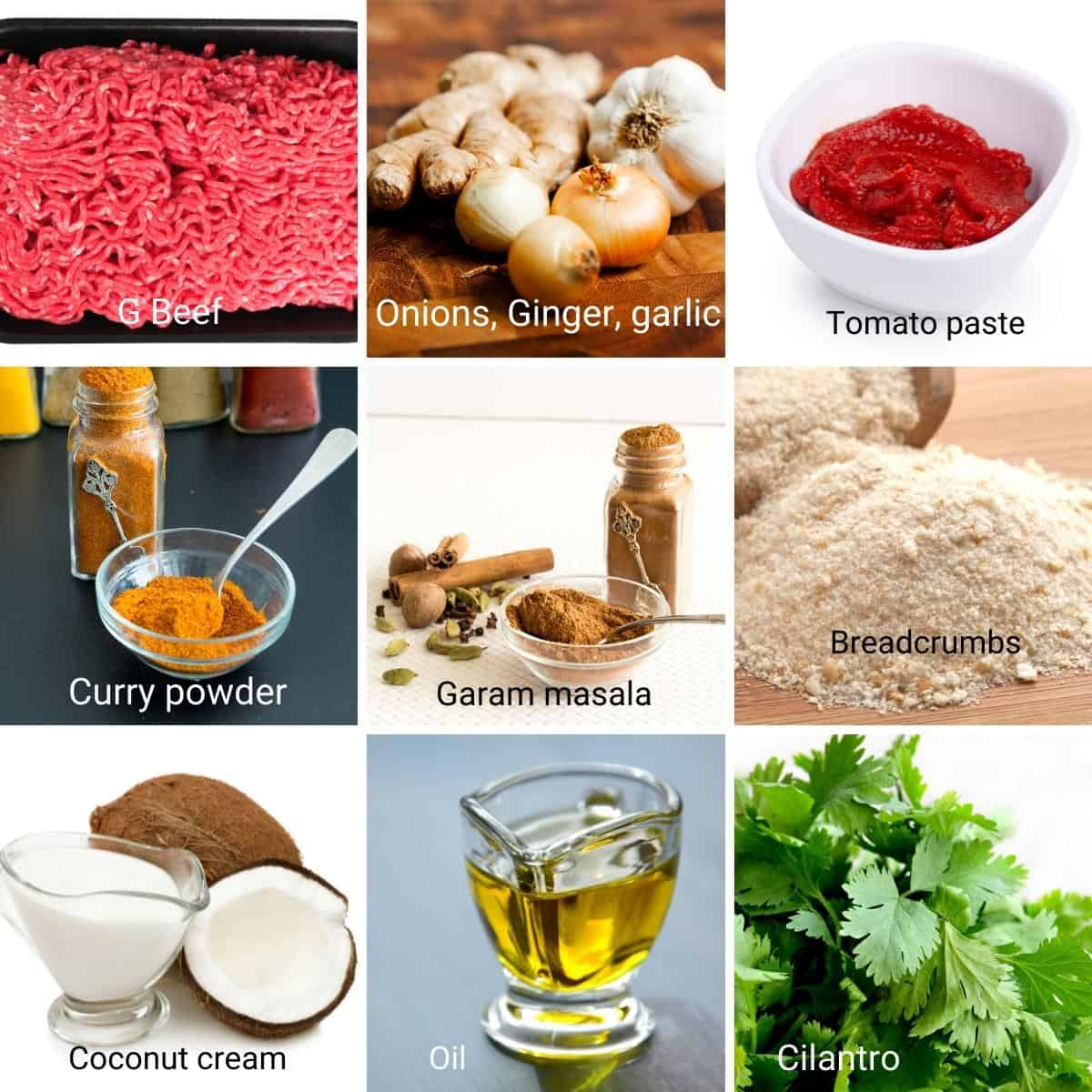 Ingredients for making the meatball kofta curry.