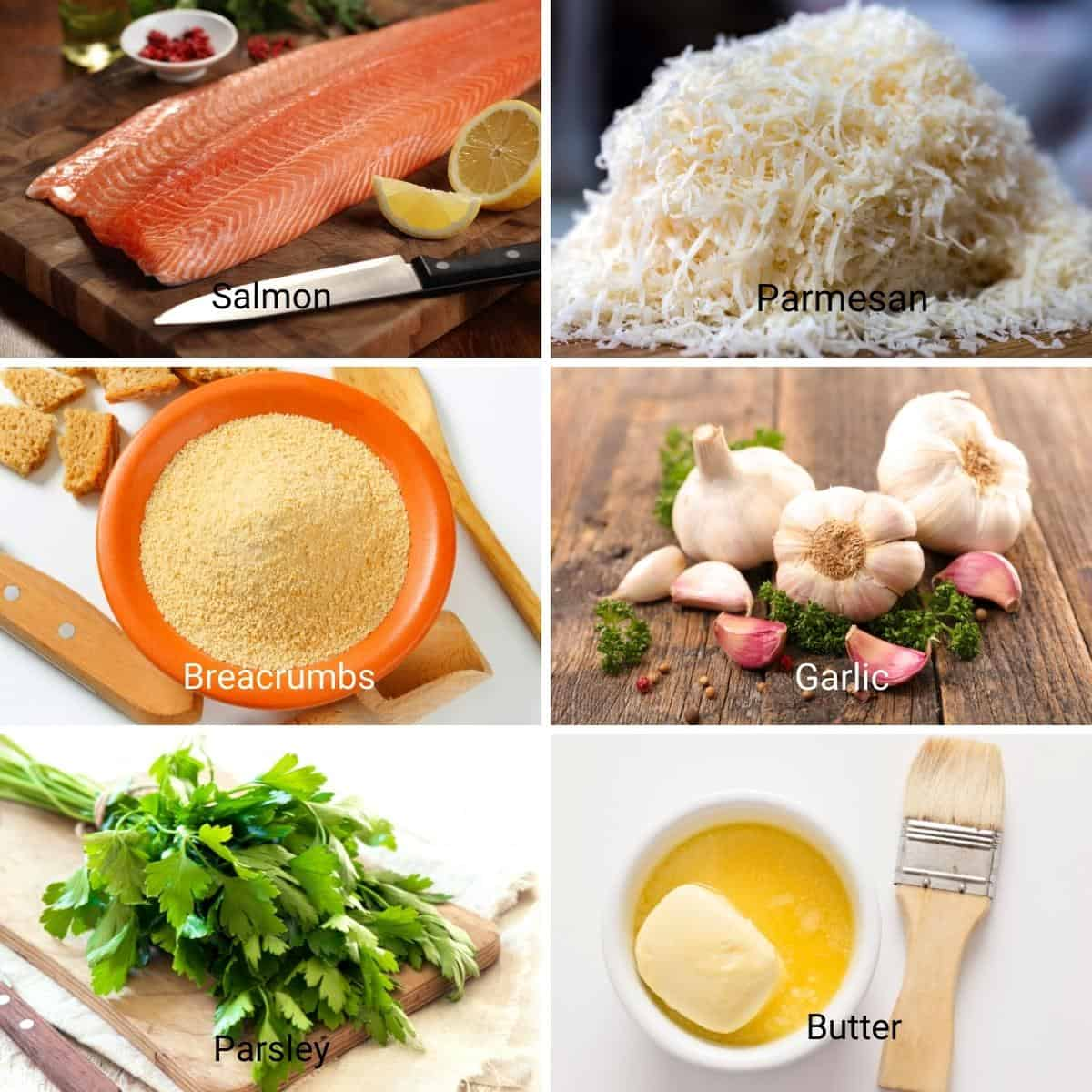 Ingredients for Baked Salmon with Parmesan.