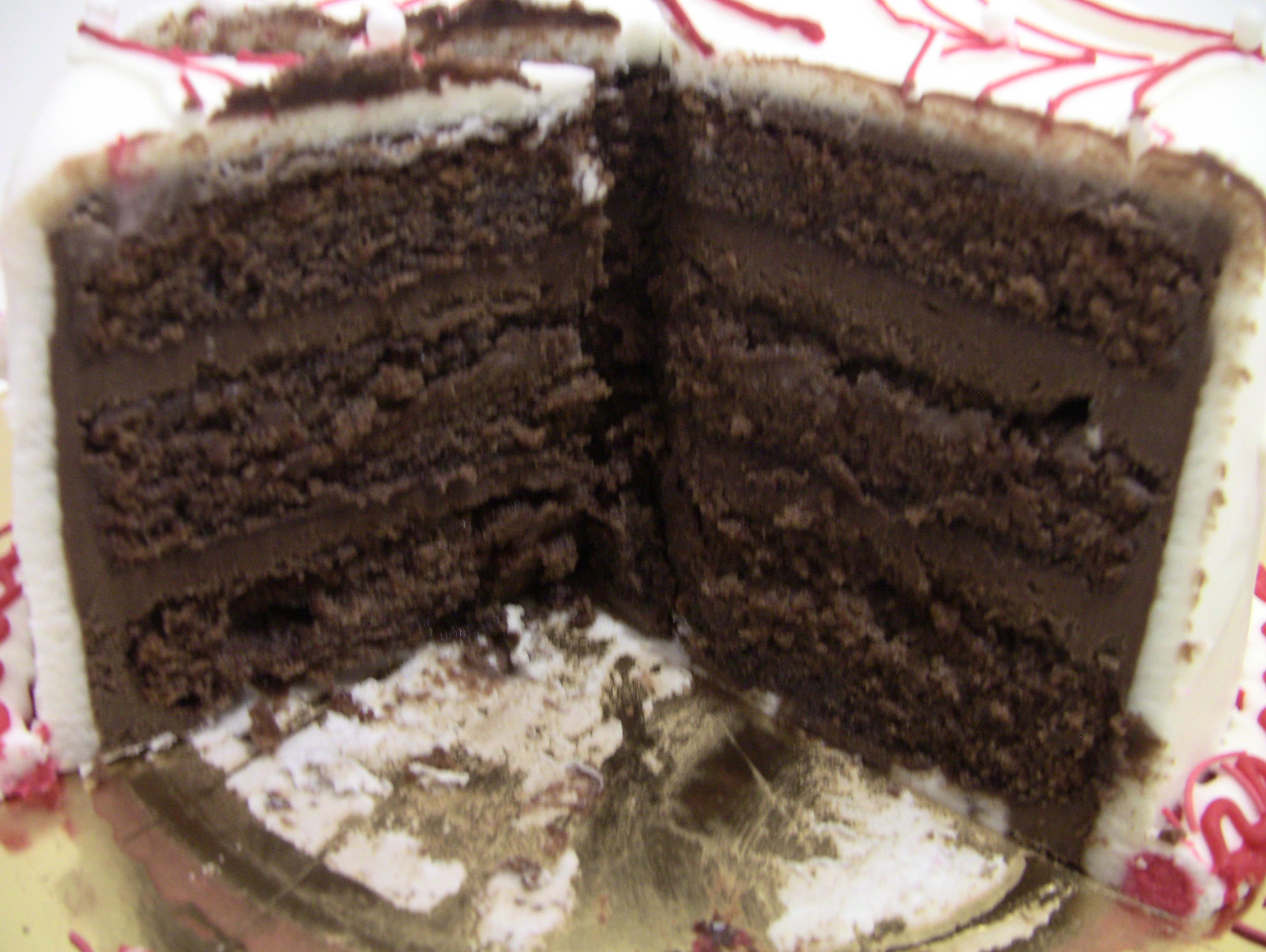 Double Chocolate Chocolate Cake